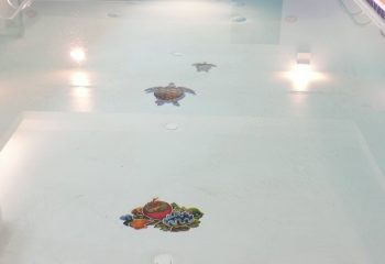 comfort-indoor-pool-3-mosaics